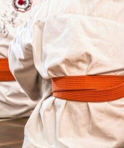 Artes marciales y lucha
